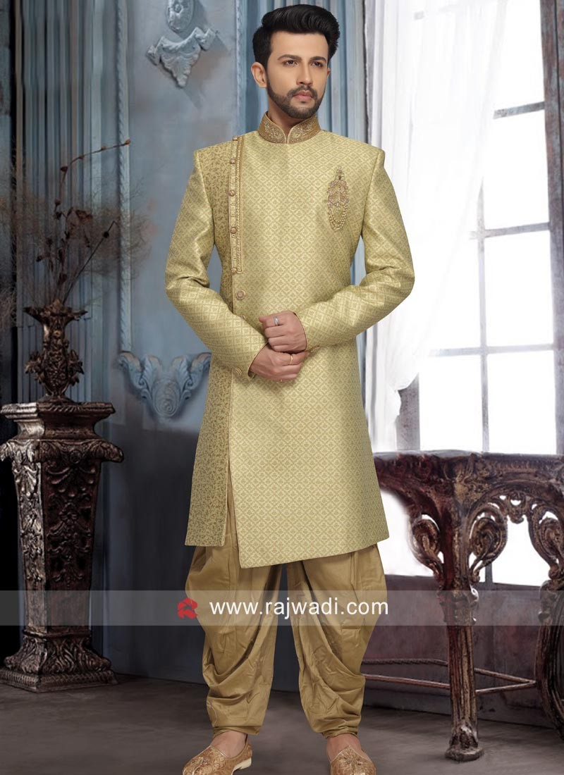 Charming Light Green Indo Western