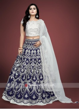 Beautiful Blue and Grey Coloured Choli Suit