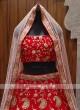 Bridal Red colour lehenga choli