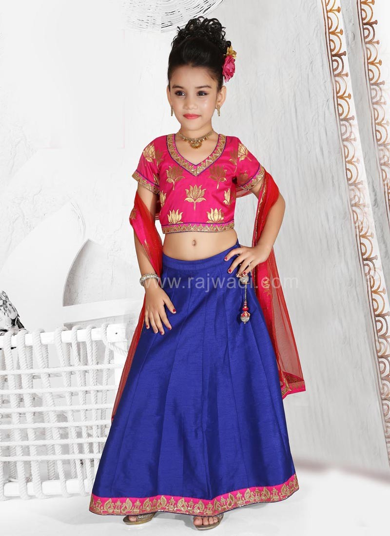 Embroidered Girls Choli Suit