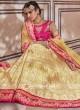 Lucknowi Designer Lehenga Set