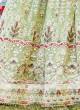 Embroidered Chiffon Lehenga Choli