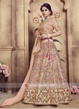 Attractive Resham Embroidered Lehenga Choli