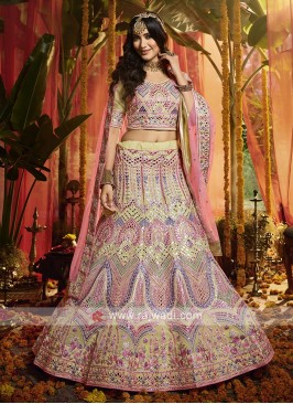 Beautiful Lehenga Choli In Off White