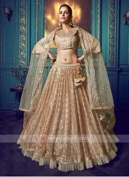 Beautiful Sequins Work Lehenga Choli
