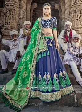 Blue and Green Embellished Lehenga