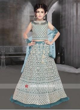Blue color net fabric choli suit