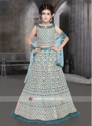 Blue color net fabric choli suit