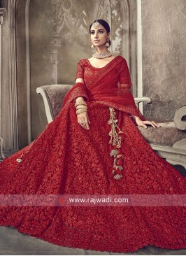 Bridal Red Net Lehenga Choli with Dupatta