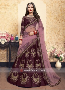 Brown Patch Embroidery Lehenga Choli