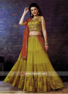 Chiffon Floral Embroidered Pleated Lehenga Choli