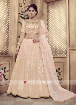 Classic Peach coloured Lehenga Choli