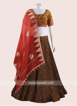 Cotton Thread Work Chaniya Choli