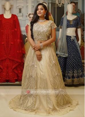 Tissue Silk Indo-Western Style.