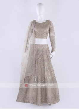 Embroidered Lehenga Choli In Cream Color
