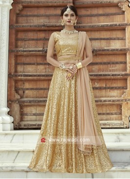 Embroidered Lehenga in Beige