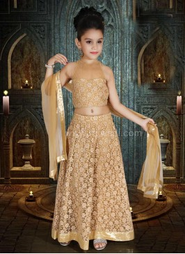 Embroidered Net Choli Suit