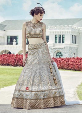 Embroidered Tissue Silk Lehenga Choli