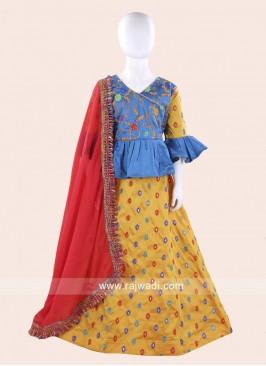 Embroidery Work Girls Chaniya Choli