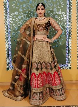 Golden Brown Color Velvet Lehenga Choli