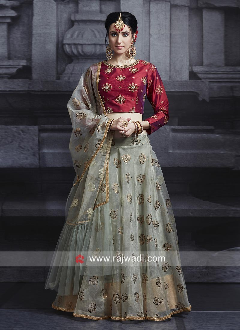 Grey Embroidered Choli Suit