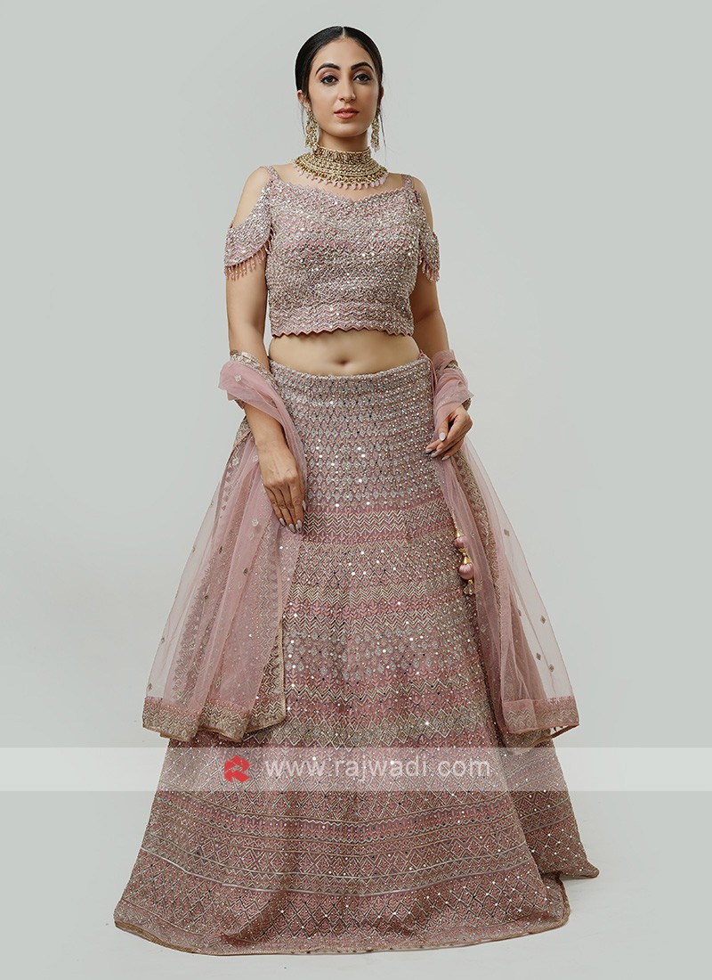 Heavy Embroidered Net Choli Suit
