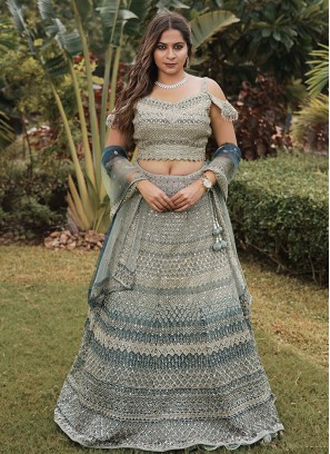 Heavy Embroidered Net Choli suit In Blue And Pista Green Color