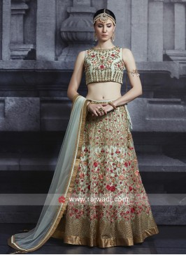 Heavy Embroidery Net Choli Suit