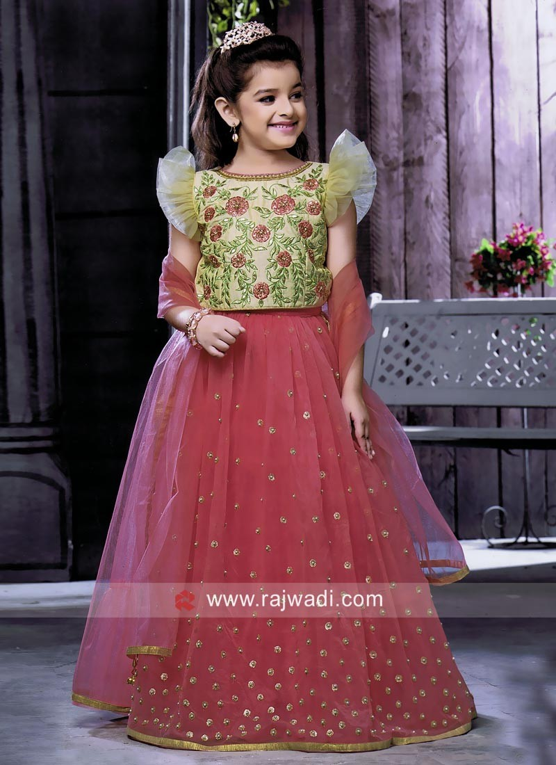 Kids Net Traditional Choli Suit