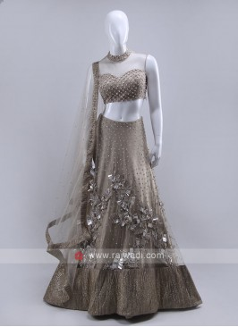 Light grey color  lehenga choli