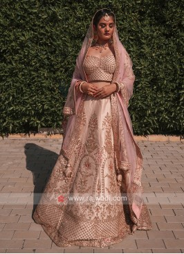 Light Pink Color Bridal Lehenga Choli