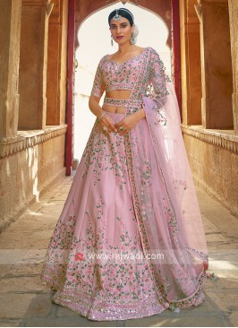 Light Pink Silk Choli suit.