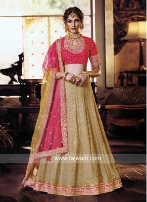 Lucknowi Lehenga Choli with Shaded Dupatta