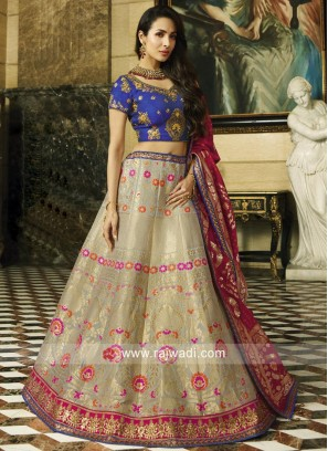 Malaika Arora Khan Lehenga Choli in Grey
