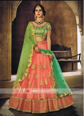Net and Raw Silk Embroidered Lehenga Set