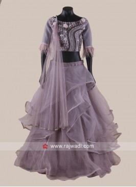 Net and Silk Ruffled Lehenga Choli
