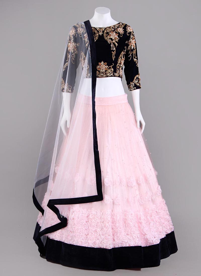 Net and Velvet Two Tone Choli Suit