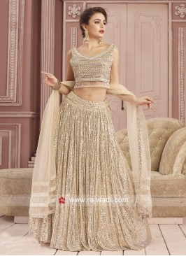 Net Beige Color Choli Suit