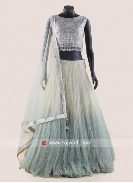 Net Designer Shaded Lehenga Choli