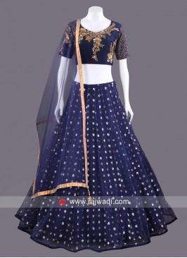 Net Embellished Blue Choli Set