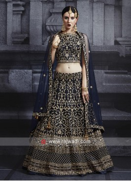 Net Embroidered Choli Suit in Navy Blue