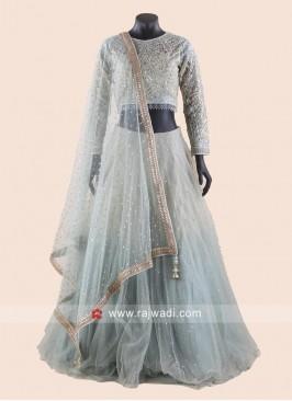 Net Embroidered Shaded Lehenga Choli