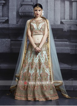 Net Heavy Work Lehenga with Dupatta