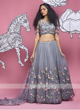 Net Lehenga Choli In Grey