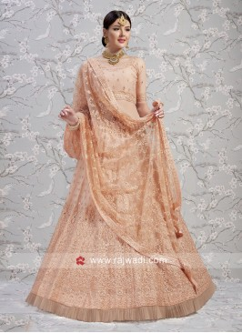 Peach Soft Net Lehenga Choli