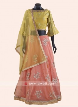 Pita and Stone Work Lehenga Choli