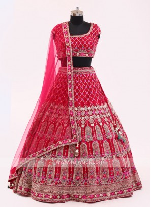 Rani Color Net Choli Suit
