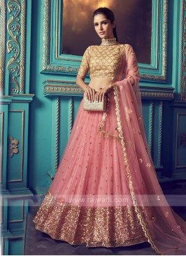 Sequins Work Net Lehenga Choli