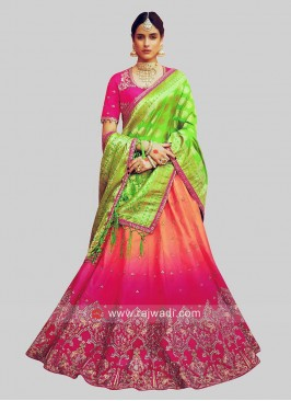 Shaded Embroidered Lehenga Choli