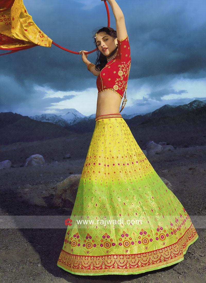 Shaded Silk Lehenga Choli